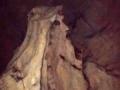 Kamena figura u Vladikinoj pećini