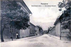Njegoševa ulica