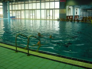 Plivanje: osamnaesti Kup Pančeva