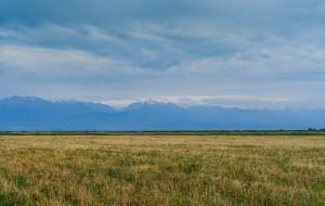 zemljiste
