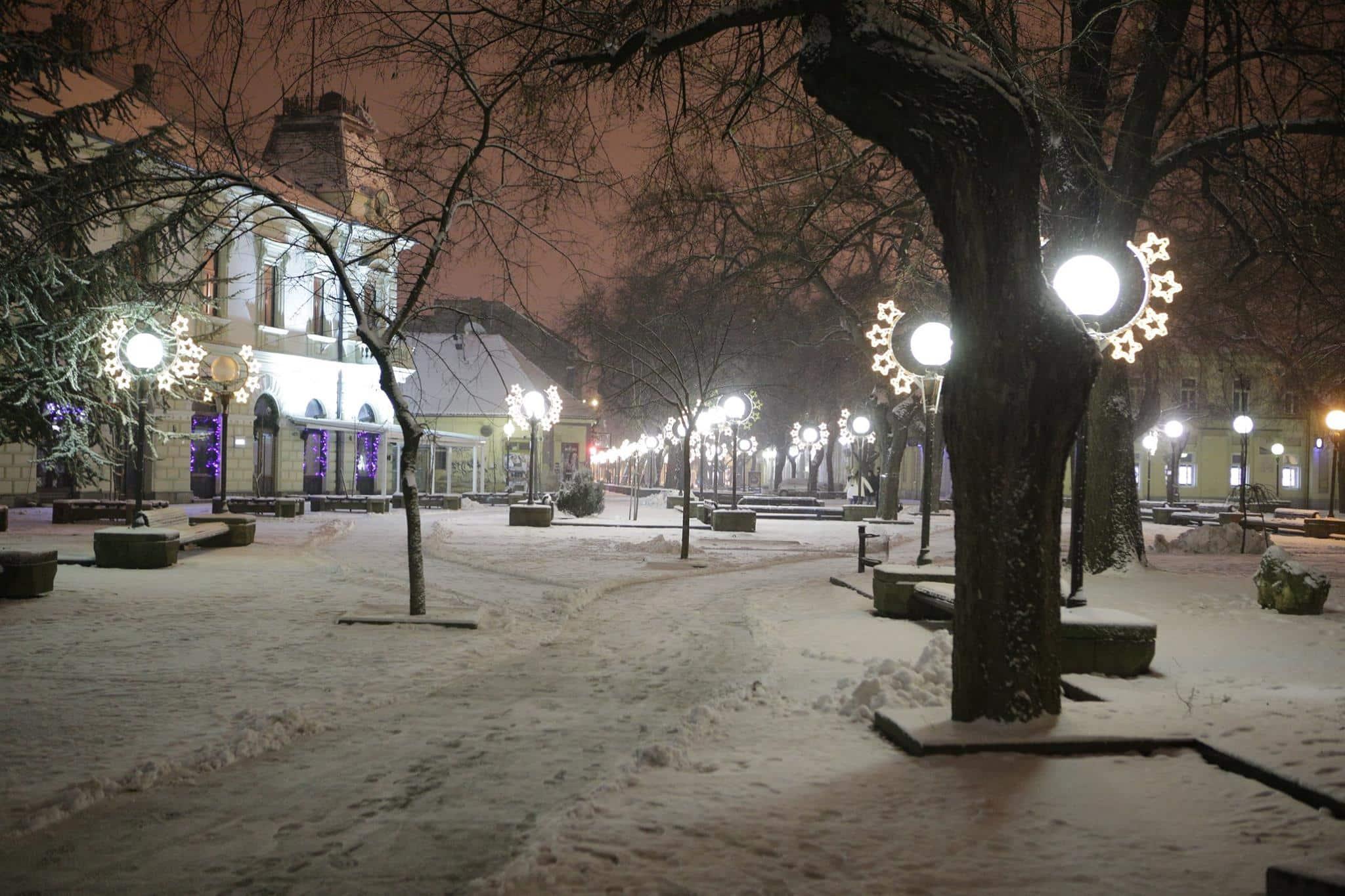 zima u parku