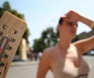 Kako preživeti tropske vrućine