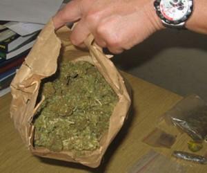 Pančevačka policija u vrhu po broju zaplena droge