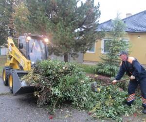 """U toku """"Higijenino"""" čišćenje grada"""