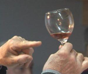 """U Padini održana tradicionalna manifestacija """"Vino, muzika, kobasice"""""""